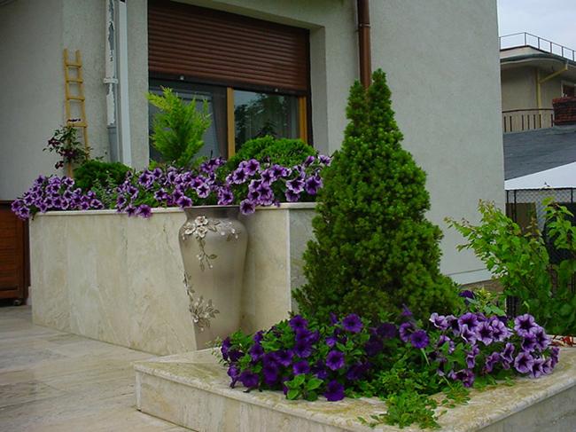 Главный вход дома можно украсить клумбами с цветами и хвойными растениями, главную роль среди которых обязательно отвести вечнозеленому конусу канадской ели