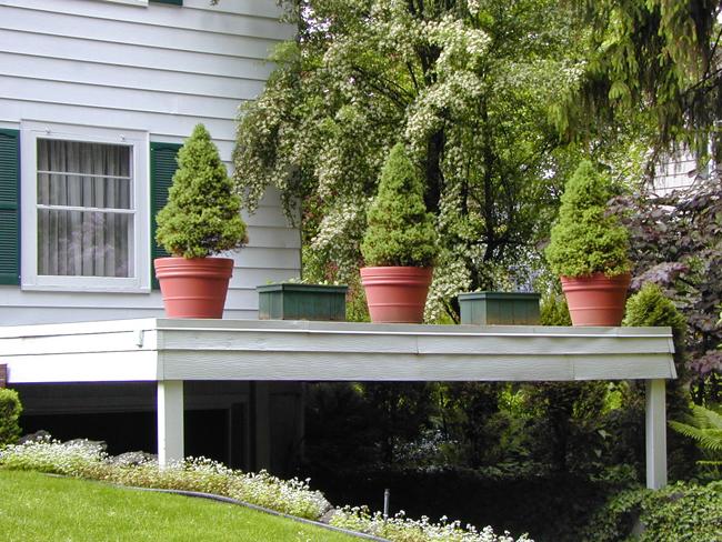Несколько горшков с канадскими елочками на терасе выполнят роль огражнения