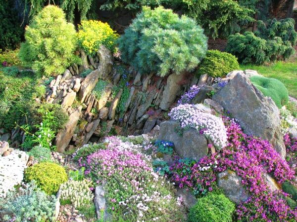 Более крупные растения высаживаются на вершинах скалки, подчеркивая динамику перепада высот