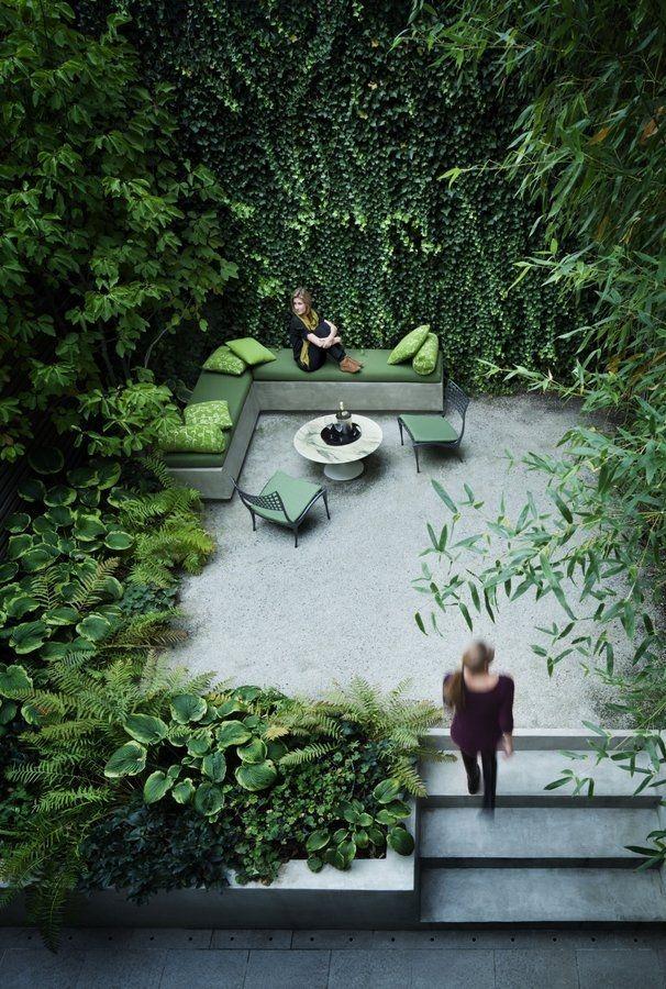 Вьющиеся растения на стене - как способ изменить восприятие пространства дачного участка