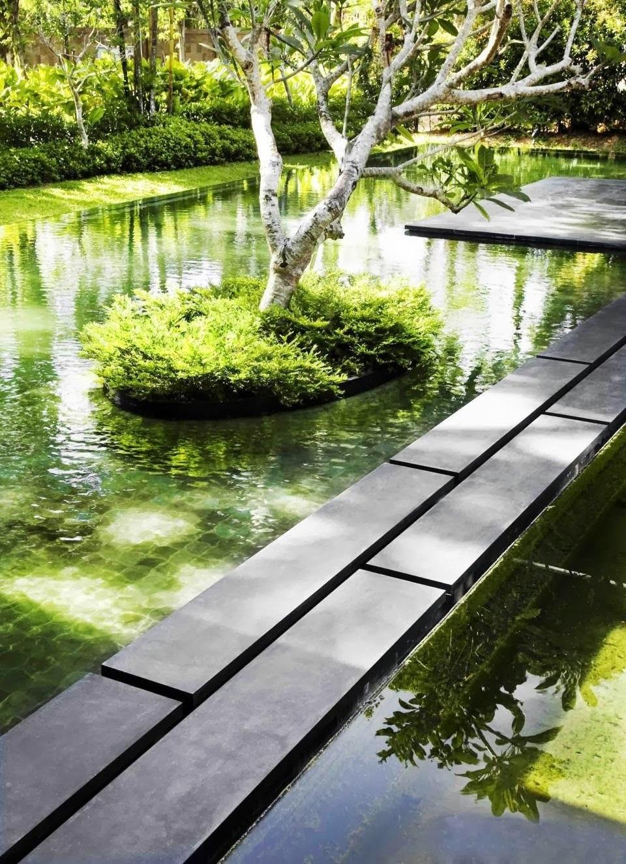 Неглубокий и широкий декоративный пруд