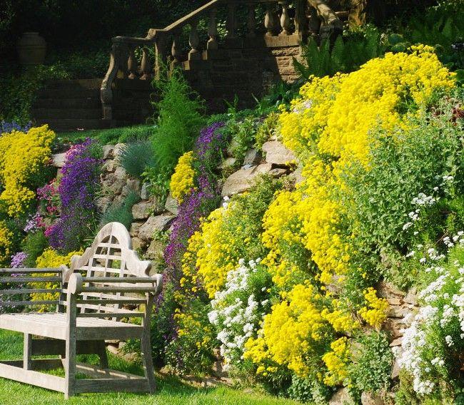 Обилие цветов на альпийской горке