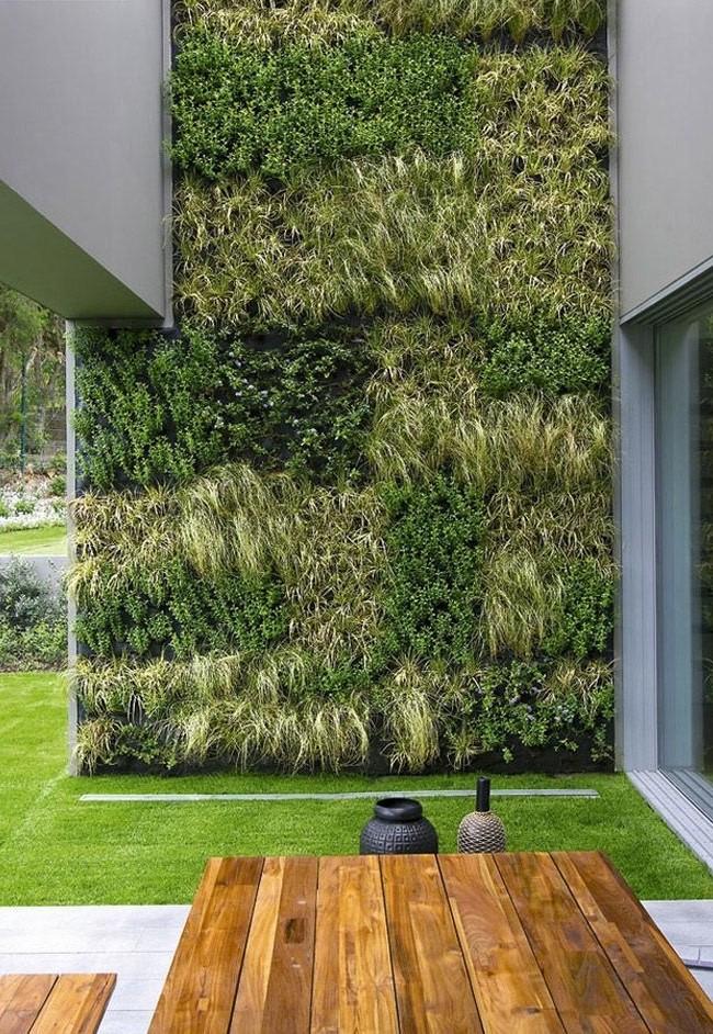 Вертикальное озеленение в ландшафтом дизайне