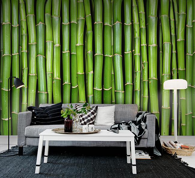R11821 - Bamboo