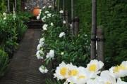 Фото 12 Садовые дорожки своими руками (45 фото): материал, форма, особенности