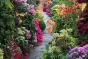 Фото 15 Садовые дорожки своими руками (45 фото): материал, форма, особенности