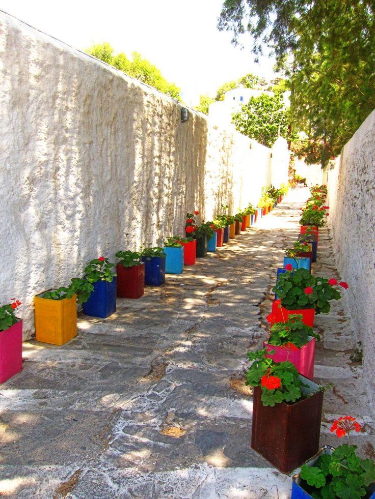 Спасением для аллеи из скучных бетонных стенок стали яркие разноцветные ящички с геранью