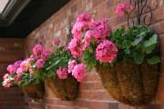 Фото 16 Уличные вазоны для цветов (48 фото): все о материалах и изготовлении