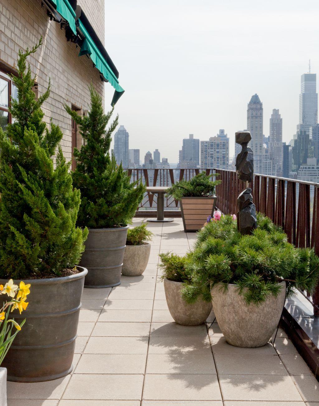 Бетонные вазоны с хвойными растениями украсят террасу дома