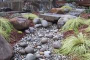 Фото 13 Сухой ручей (46 фото): когда поток камней оживает