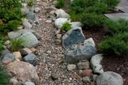 Фото 11 Сухой ручей (46 фото): когда поток камней оживает