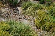 Фото 17 Сухой ручей (46 фото): когда поток камней оживает