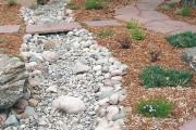 Фото 9 Сухой ручей (46 фото): когда поток камней оживает