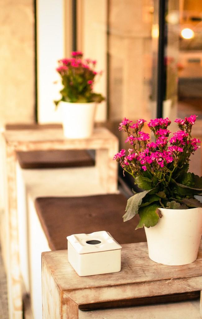 Благодаря ярким соцветиям и неприхотливости, каланхоэ - это отличное украшение для террас и летних площадок