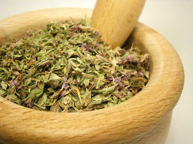Тимьян с древности почитался как божественная трава, способная возвращать человеку не только здоровье, но и жизнь