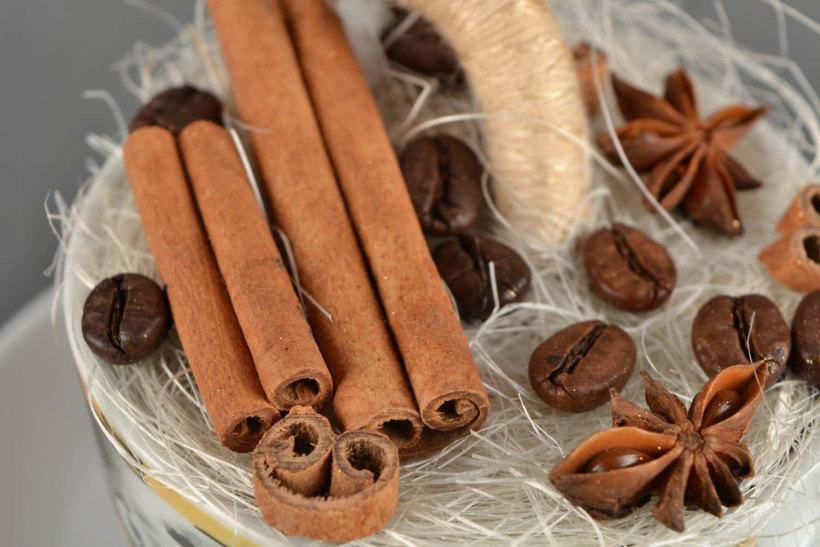 Для украшения кофейного топиария лучше всего подходят звездочки аниса и гвоздики, палочки корицы, можно ванили, высушенные дольки цитрусовых и так далее