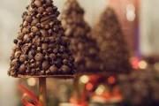 Фото 1 Кофейные деревья (40 фото): как создать топиарий своими руками