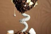 Фото 5 Кофейные деревья (40 фото): как создать топиарий своими руками