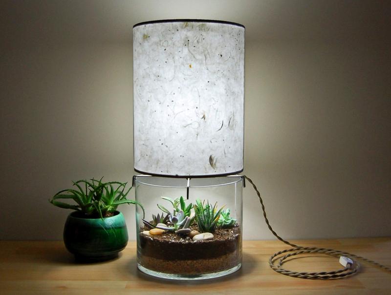 Лампа-флорариум: мягкое освещение, развлечение и декор