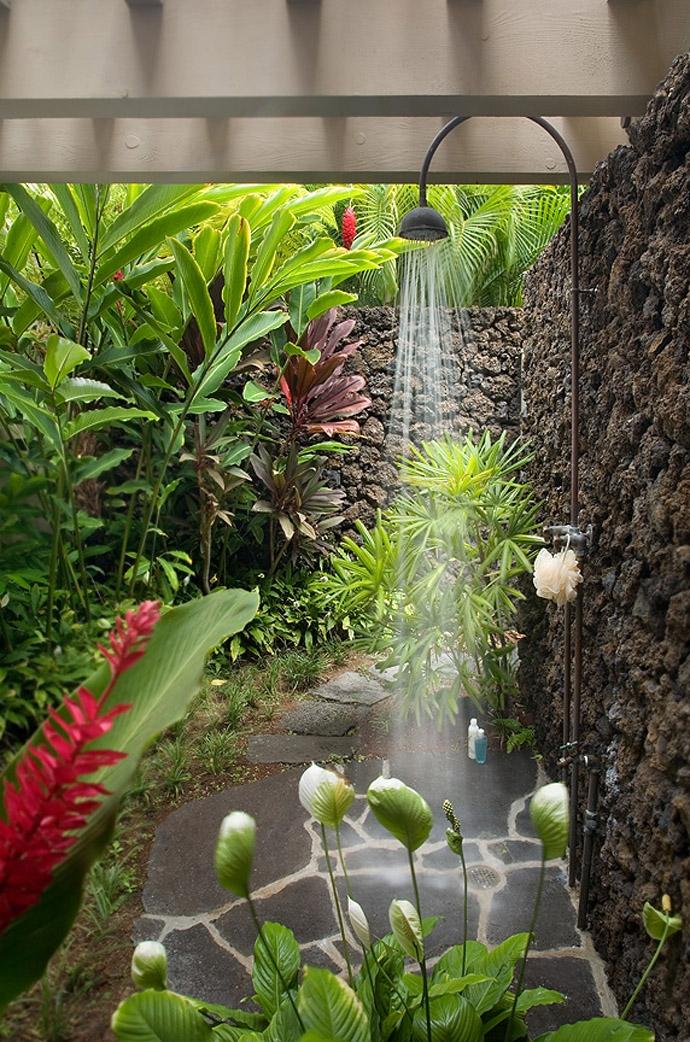 Спатифиллум каннолистный в летнем душе, густо уставленном тропическими растениями