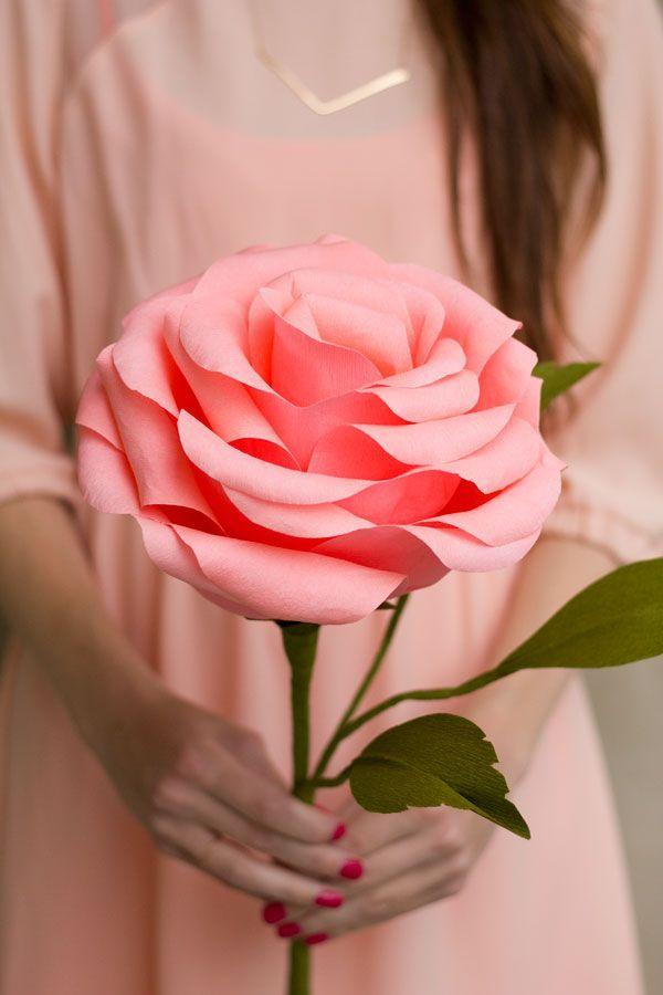 Роскошная нежная роза из гофробумаги