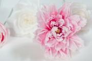 Фото 22 Цветы из гофрированной бумаги своими руками: лучшие мастер-классы и советы по декору