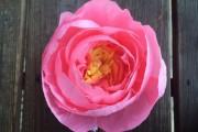 Фото 43 Цветы из гофрированной бумаги своими руками: лучшие мастер-классы и советы по декору