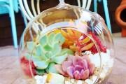 Фото 4 Флорариум своими руками: пошаговый мастер-класс по созданию потрясающего мини-сада за стеклом