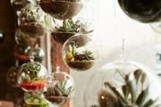 Фото 18 Флорариум своими руками: пошаговый мастер-класс по созданию потрясающего мини-сада за стеклом
