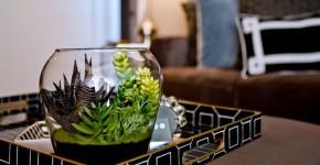 Мини-сад за стеклом: делаем флорариум своими руками фото