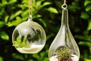 Фото 2 Флорариум своими руками: пошаговый мастер-класс по созданию потрясающего мини-сада за стеклом
