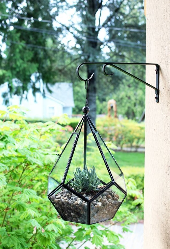 Флорариум-подвеска в саду