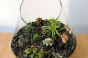 Фото 56 Флорариум своими руками: пошаговый мастер-класс по созданию потрясающего мини-сада за стеклом
