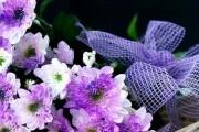 Фото 18 Хризантема садовая многолетняя: посадка и уход (77 фото)