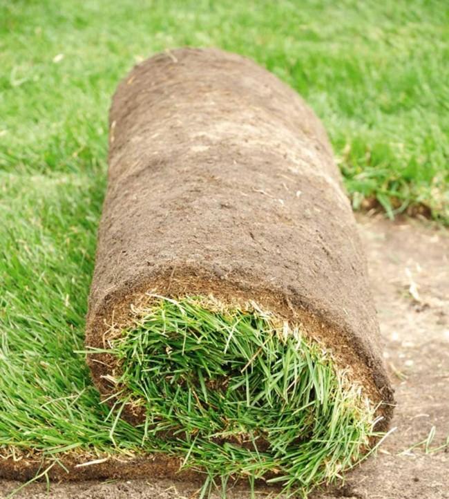 Правильная доставка поможет сохранить качество рулонного газона