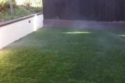 Фото 7 Как укладывать рулонный газон (44 фото): технология и описание процесса пошагово