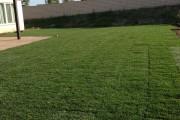 Фото 8 Как укладывать рулонный газон (44 фото): технология и описание процесса пошагово