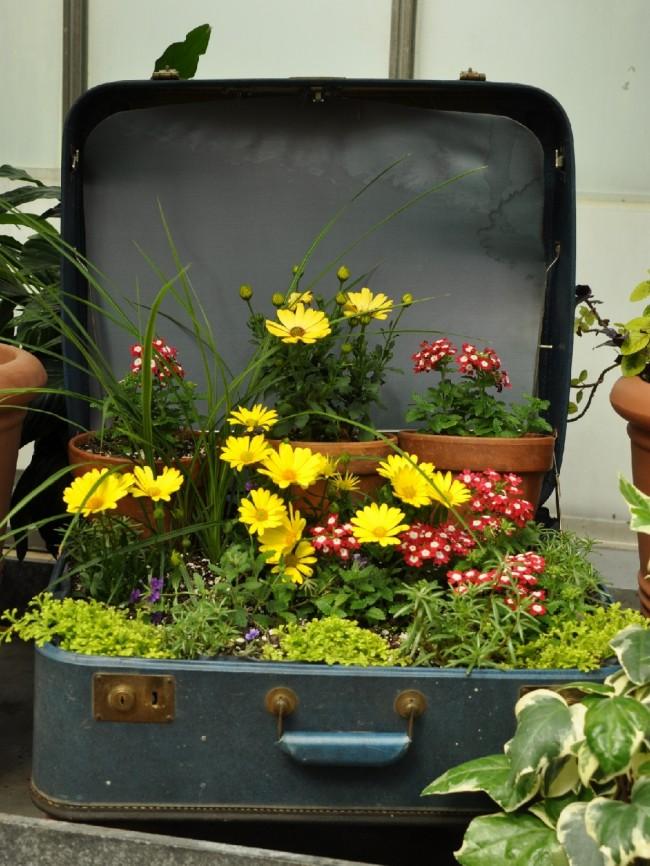 Использовать старый чемодан в качестве уличного вазона для цветов - интересная идея