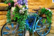 Фото 21 Кашпо для цветов своими руками (60+ фотоидей и мастер-классы): украшаем дом и сад стильно!