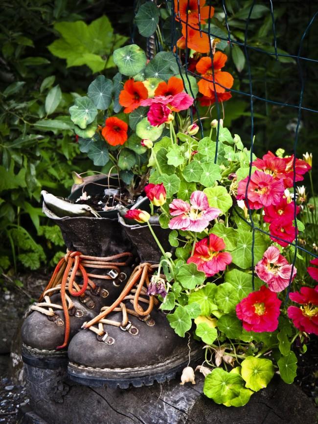 В руках мастера обычные на первый взгляд емкости могут преобразиться в удивительно красивые контейнеры для цветов, которые станут ярким штрихом любого пространства