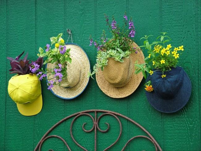 Старые головные уборы тоже могут послужить в роли кашпо для растений