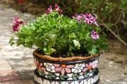 Фото 31 Кашпо для цветов своими руками (60+ фотоидей и мастер-классы): украшаем дом и сад стильно!