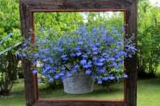 Фото 38 Кашпо для цветов своими руками (60+ фотоидей и мастер-классы): украшаем дом и сад стильно!