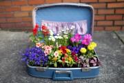 Фото 2 Кашпо для цветов своими руками (60+ фотоидей и мастер-классы): украшаем дом и сад стильно!