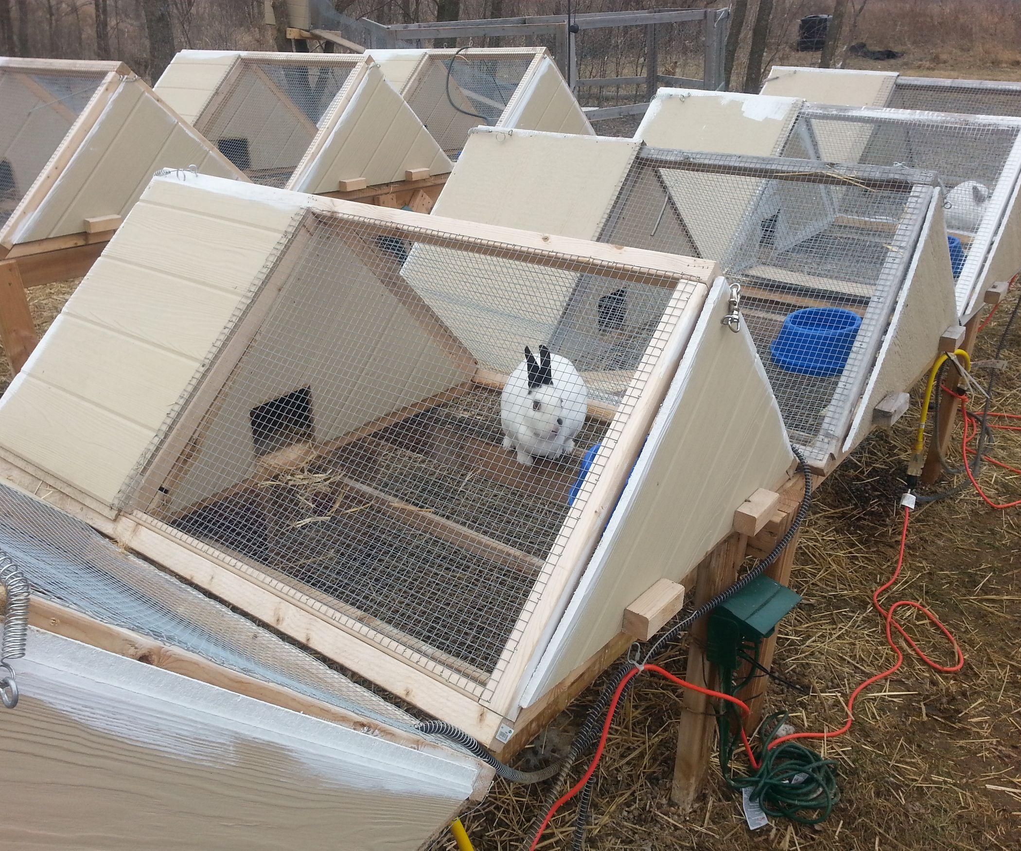 Как самому сделать простую клетку для кроликов