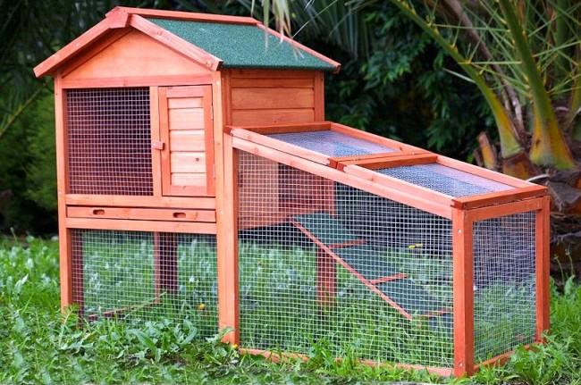 Для защиты от грызунов, кошек и собак жилье кроликов располагается на высоте 70 см от земли