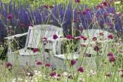 Фото 10 Лаванда (52 фото): посадка и уход за своенравным и красивым растением
