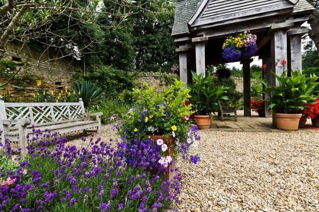 Время цветения лаванды - с начала июня по август