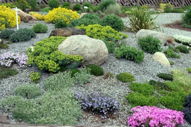 Небольшие камни хорошо сочетаются с невысокими растениями