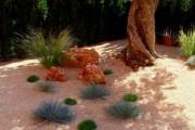 Фото 2 Рокарий (48 фото): растительно-каменный тандем на плоской поверхности